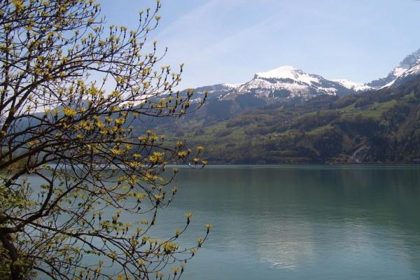 Lago de Walen (Suiza)