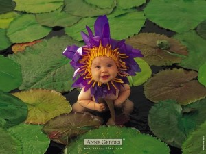 Colección Anne Geddes: Florecilla morada