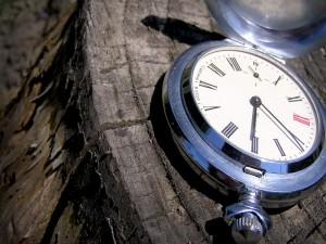 Postal: Reloj en el tronco de un árbol