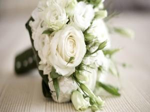 Postal: Ramo de flores blancas