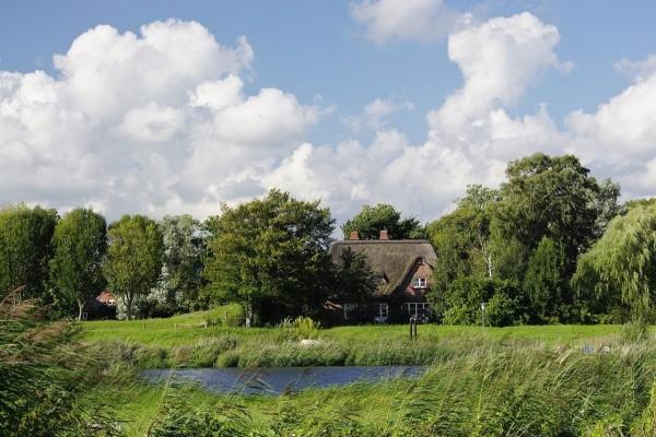 Casas entre árboles (Alemania)