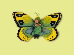 Baby mariposa