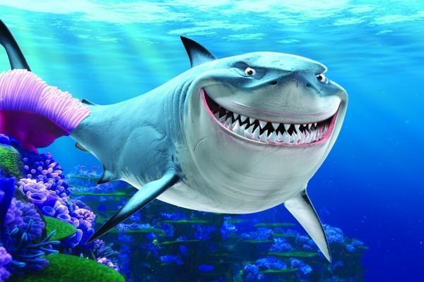 "Bruce ""Buscando a Nemo"""