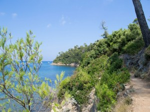 Postal: Isla de Port-Cros (Francia)