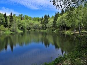 Lago con aguas tranquilas y transparentes