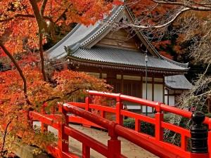 Puente junto a una casa en Japón