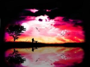 Atardecer solitario