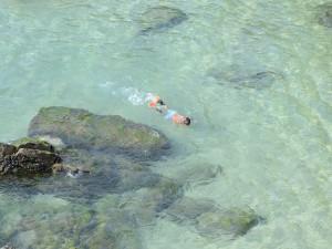 Postal: Niño buceando en la playa de Porto Covo, Portugal