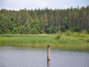 Postal: Frontera entre Polonia y Bielorrusia (Augustów Canal)