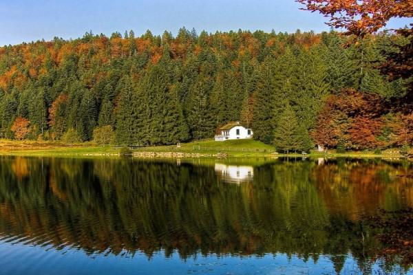Lago Genin