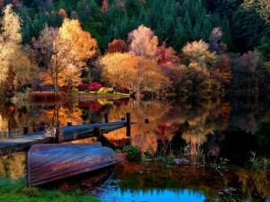 Postal: Lago en otoño