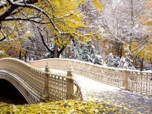 Postal: Puente con hojas y nieve
