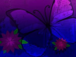 Mariposa en tonos malvas