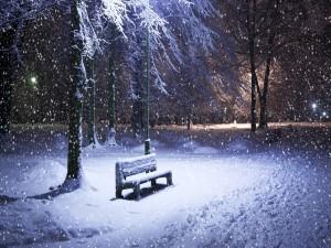 Postal: Banco solitario en una noche nevada