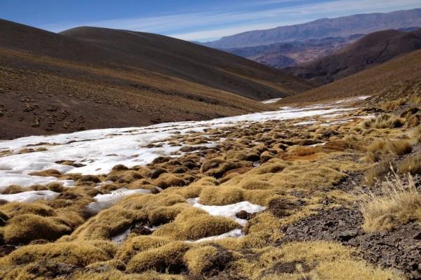 Arroyo congelado (Abra del Acay, Salta)