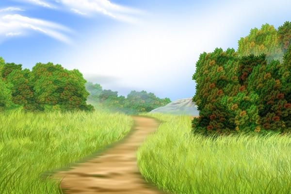Camino entre vegetación