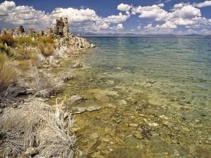 Postal: Orilla del lago Mono (California, EE.UU.)
