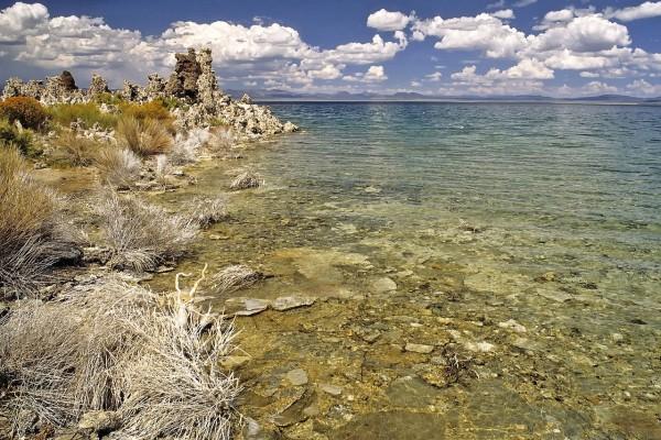 Orilla del lago Mono (California, EE.UU.)