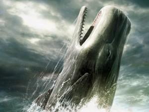 Postal: La gran ballena