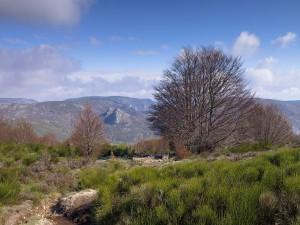 Postal: Parque Natural Regional del Haute Languedoc, Francia