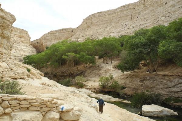 Reserva natural de Ein Ovdat