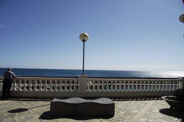 Contemplando la mar