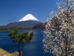 Monte Fuji (Japón)