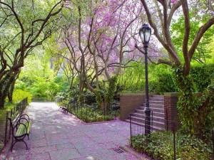 Parque público con plantas, flores y bancos