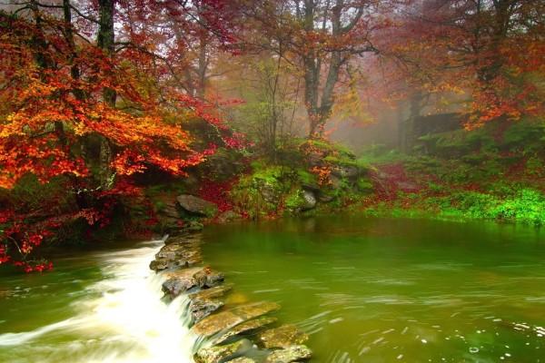Hermoso paisaje con río