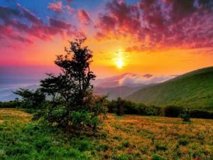 Puesta de sol en Carolina del Norte