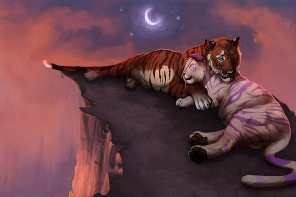 Amor salvaje sobre el acantilado con la luz de la luna