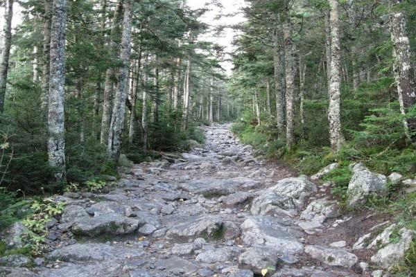 Camino del Barranco Tuckerman (New Hampshire)