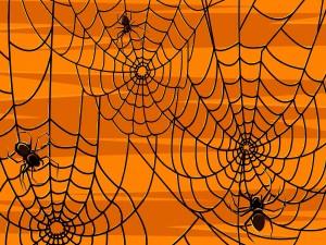 Postal: Arañas