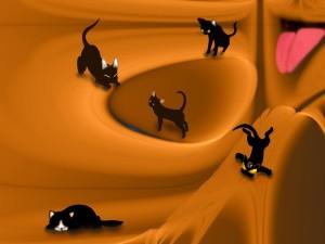 Gatitos negros
