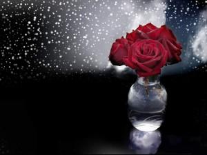 Postal: Bellas rosas