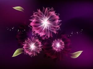 Postal: Flores abstractas