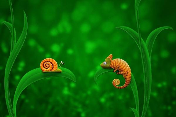 Un caracol y un camaleón
