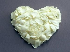 Corazón con pétalos de flor