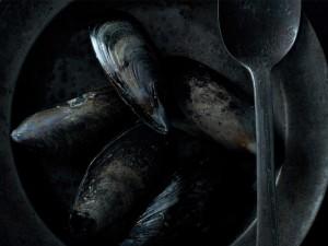Mejillones en su concha