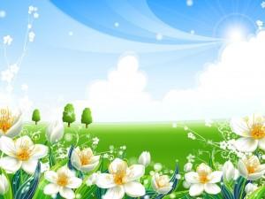 Postal: Flores en el campo