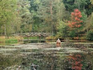 Postal: Puente sobre un estanque