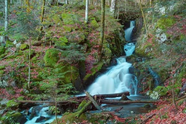 Cascadas en el río Savoureuse (Lepuix, Francia)