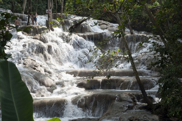 Cascadas del río Dunn (Jamaica)