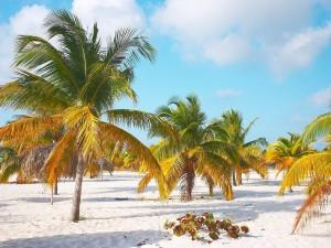 Postal: Playa Sirenas en Cayo Largo del Sur (Cuba)