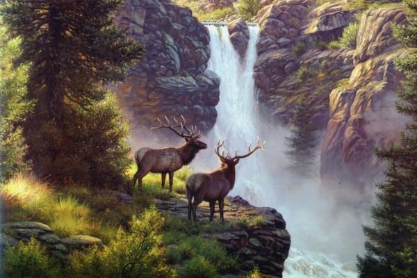 Ciervos en la cascada