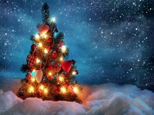 Postal: Pequeño árbol de Navidad