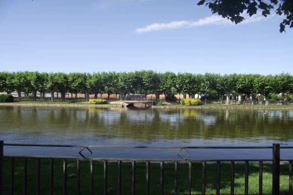 Estanque en el parque