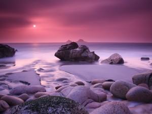 Postal: Atardecer rosado en una playa rocosa