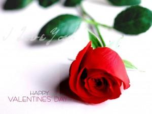 Postal: Feliz Día de San Valentín