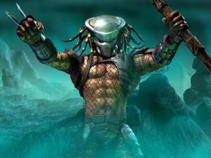 Predator gladiador